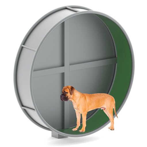 מתקן ריצה והליכה לכלבים, פיברן מומחים בפיתוח גינות כלבים ומתקני שעשועים